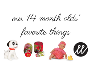 Favorite Things at 14 Months Old!