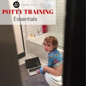 2016 Potty Training Essentials